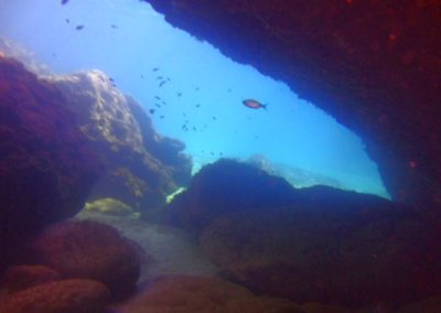 Med sea diving with Scuba Moraira (3)